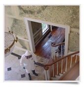 fort collins mold remediation